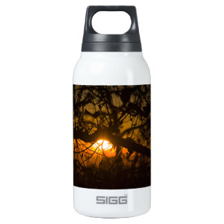 Branches And Twigs Insulated Water Bottle