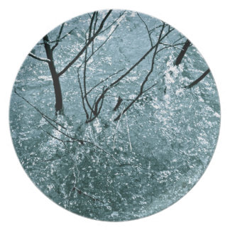BRANCHES IN ICE BLUE WATER RAPIDS DINNER PLATE