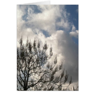 Branches in the Clouds Card