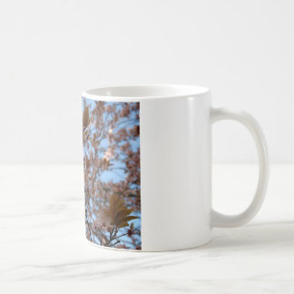 Branches in the sun coffee mug