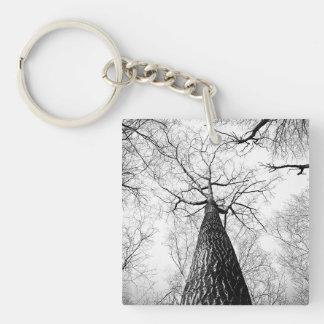 branches keychain