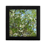 Branches of Dogwood Blossoms Spring Trees Keepsake Box