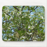 Branches of Dogwood Blossoms Spring Trees Mouse Pad