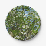 Branches of Dogwood Blossoms Spring Trees Paper Plate
