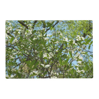 Branches of Dogwood Blossoms Spring Trees Placemat