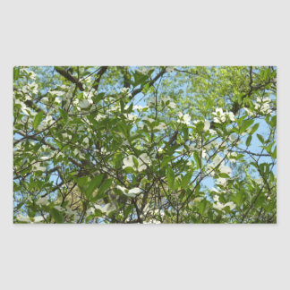 Branches of Dogwood Blossoms Spring Trees Rectangular Sticker