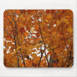 Branches of Maple Leaves I Orange Autumn Mouse Pad