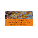 Branches of Maple Leaves II Orange Autumn Label