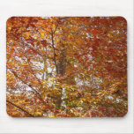 Branches of Orange Leaves Autumn Nature Mouse Pad