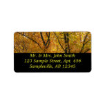 Branches of Yellow Leaves Bright Autumn Colorful Label
