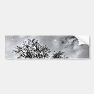 Branches to Heaven Bumper Sticker
