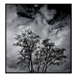 Branches to Heaven Poster