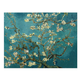 Branches with Almond Blossom by Vincent Van Gogh Postcard
