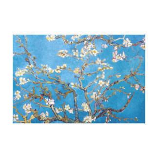 Branches with Almond Blossom Van Gogh Canvas Print