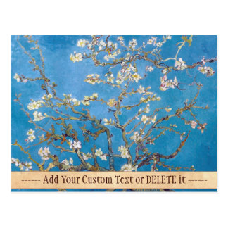 Branches with Almond Blossom Van Gogh painting Postcard