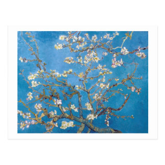 Branches with Almond Blossom Van Gogh Postcard