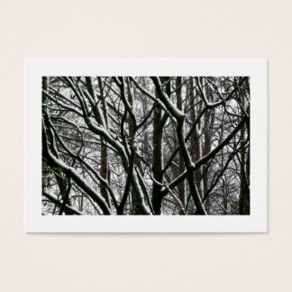Branches with Snow, Mini Photo Business Card