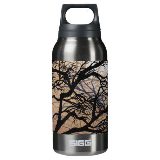 Branching Out Insulated Water Bottle