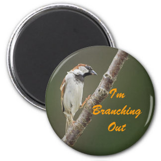 Branching Out Sparrow 2 Inch Round Magnet