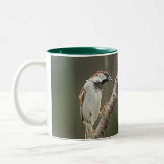 Branching Out Sparrow Mug