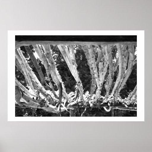 Branchs detallado poster
