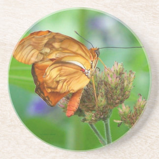 Brand new hatched butterfly baby, orange wings drink coaster