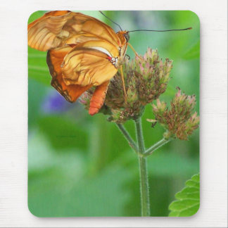 Brand new hatched butterfly baby, orange wings mouse pad