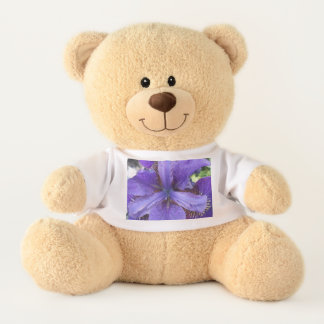 Brandeis Teddy Bear