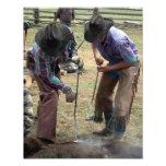 Branding Calves 11x14 Photo Art