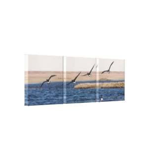 Brandt Geese Flying and Artic Loon Photo Designed Canvas Print