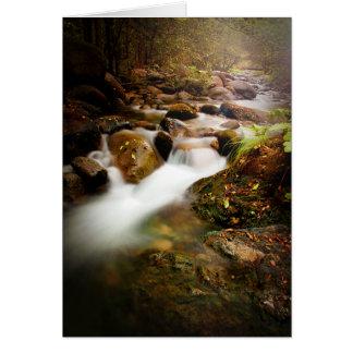 Brandy Creek Cards
