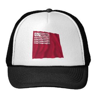 Brandywine Flag Trucker Hats