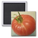 Brandywine Tomato 2 Inch Square Magnet