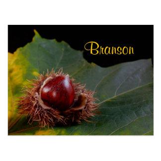 Branson Missouri, hoja del otoño con la postal de