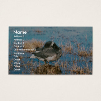 Brant Business Card