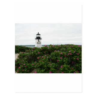 Brant Point Lighthouse with flowers Postcard