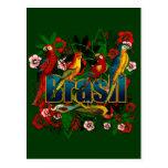 Brasil Brazil Tropical floral rainforest birds art Postcard
