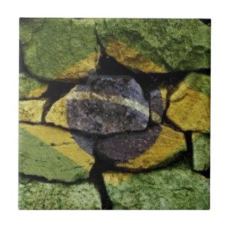 Brasil Flag stones Small Square Tile