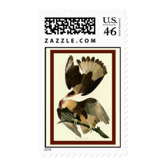 Brasilian Caracara Eagle Stamps