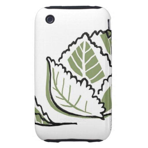 Brassica oleracea iPhone 3 tough protector