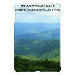 Brasstown Bald - Chattahoochee National Forest iPad Mini Covers