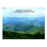 Brasstown Bald - Chattahoochee National Forest Postcard