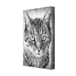 brav orgulloso blanco del negro del gato nacional impresión en lienzo