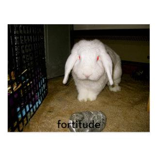 brave bunny postcard