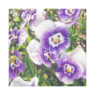 Brave Pansies white purple Color Pencil drawing Canvas Print