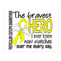 Bravest Hero I Ever Knew Testicular Cancer Postcard