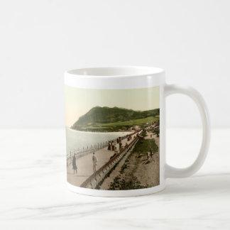 Bray Co. Wicklow Vintage Mug