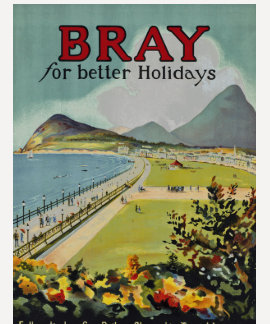 Bray For Better Holidays T-shirt