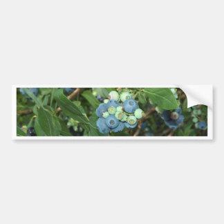 Brays Blueberries Greene County Indiana Car Bumper Sticker