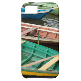 Brazil, Amazon, Alter Do Chao iPhone SE/5/5s Case